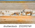 black rhino  gemsbok oryx and... | Shutterstock . vector #252393769
