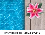 swimming pool and pink lily on... | Shutterstock . vector #252519241