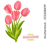 Vector Illustration Of Tulips....