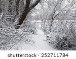 winter landscape | Shutterstock . vector #252711784