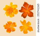 watercolor orange flowers | Shutterstock .eps vector #252741265