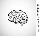 brains outline vector... | Shutterstock .eps vector #252774151