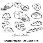 hand drawn sketch set of breads ... | Shutterstock .eps vector #252885475