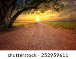 Land Scape Of Dusty Road In...