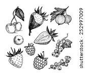 hand drawn illustration.... | Shutterstock . vector #252997009