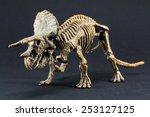 Triceratops Fossil Dinosaur...