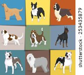 set of dogs with square... | Shutterstock .eps vector #253435879