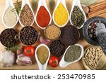 spices in ceramic containers... | Shutterstock . vector #253470985
