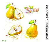 pear  all elements on separate...   Shutterstock .eps vector #253508455