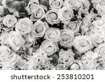 roses flower background. back... | Shutterstock . vector #253810201