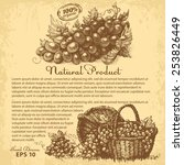 hand drawn grapes. vector... | Shutterstock .eps vector #253826449