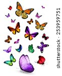 Stock photo different color butterflies 253959751