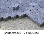 closeup of recently laid... | Shutterstock . vector #254009251