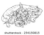 mother cat feeding kittens ... | Shutterstock .eps vector #254150815
