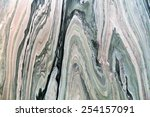 Silificated stone - stock photo