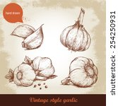vector hand drawn garlic set.... | Shutterstock .eps vector #254250931