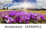 Mountain Ranges Of Ukraine Wit...