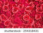 Stock photo red rose for backgrounds 254318431