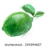 lime vector logo design... | Shutterstock .eps vector #254394607