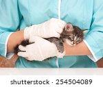 Stock photo veterinary survey of cute frightened kitten close up 254504089
