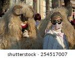 mohacs  hungary   february 15 ... | Shutterstock . vector #254517007