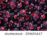 closeup of retro tapestry... | Shutterstock . vector #254651617
