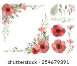 set of flowers and leaves... | Shutterstock .eps vector #254679391