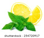 lemon and mint | Shutterstock . vector #254720917