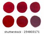 set of cosmetic texture brush... | Shutterstock .eps vector #254803171