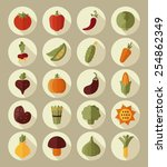 vegetable flat icon with long... | Shutterstock .eps vector #254862349