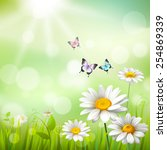 Summer Meadow Background With...