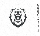 vintage bear face mascot emblem ... | Shutterstock .eps vector #254904085