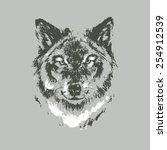 hand drawn wolf sketch on gray... | Shutterstock .eps vector #254912539