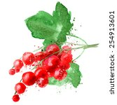 red currant vector logo design...