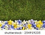 spring background flower border. | Shutterstock . vector #254919235