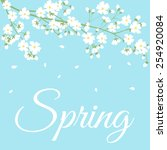 card with spring flowers on... | Shutterstock .eps vector #254920084