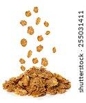 flakes  breakfast cereal...   Shutterstock . vector #255031411