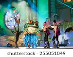 canary island  spain   february ... | Shutterstock . vector #255051049