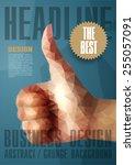template for brochures  flyers  ... | Shutterstock .eps vector #255057091