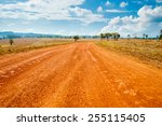 road of savanna field in summer ... | Shutterstock . vector #255115405
