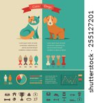 Cat Infographics With Vector...