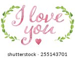 i love you tag painted with... | Shutterstock .eps vector #255143701