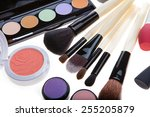makeup brush and cosmetics  on... | Shutterstock . vector #255205879