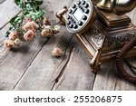 old vintage black rotary phone... | Shutterstock . vector #255206875