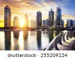 skyline of dubai marina at... | Shutterstock . vector #255209224