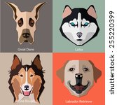 set of flat dogs faces icons.... | Shutterstock .eps vector #255220399