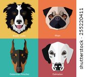 set of flat dogs faces icons.... | Shutterstock .eps vector #255220411