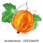 gooseberry logo design template.... | Shutterstock .eps vector #255236659