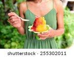 shave ice   hawaiian shaved ice ... | Shutterstock . vector #255302011