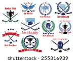 ice hockey club logo or emblems ... | Shutterstock .eps vector #255316939